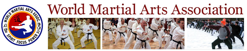 World Martial Arts Association